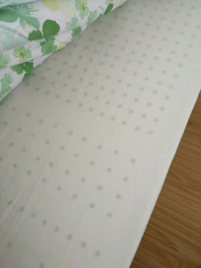 PARATEX泰国原装进口天然乳胶床垫平面/按摩/负离子多规格选择可定制 换洗床垫套 150cm*200cm 晒单图