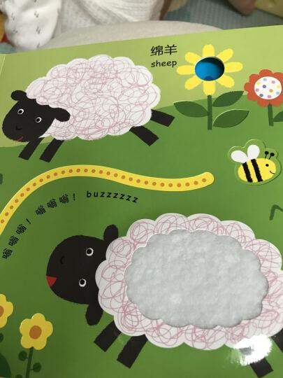 我的第一本触摸翻翻玩具书 农场 中英文双语 0-3岁宝宝趣味启蒙认知亲子洞洞游戏书儿童书籍 晒单图
