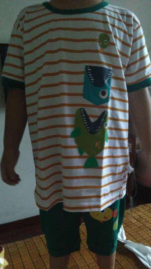 跃童莱 儿童套装夏季男童短袖T恤哈伦裤套装夏装 Y1912 帽子小熊100 晒单图