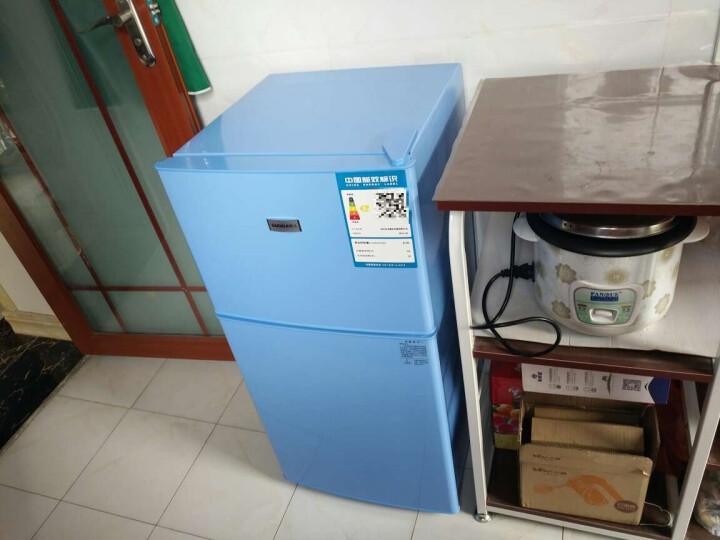 樱花(SAKURA) 樱花 BCD-56 双门 迷你 小型电冰箱 家用冷藏冷冻冰箱 蓝色 晒单图