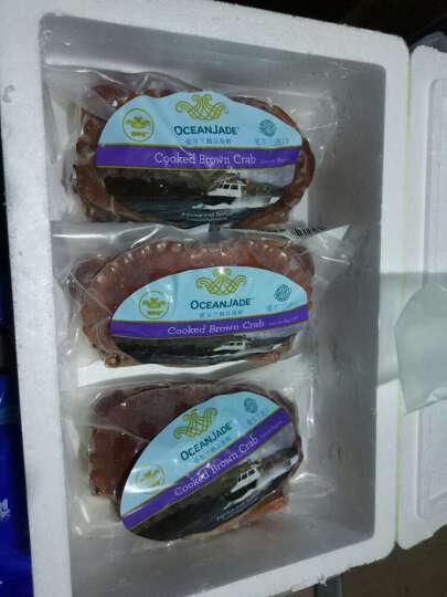 买鲜 爱尔兰进口熟冻面包蟹600-800g/1只装 鲜活熟冻 大螃蟹膏蟹 海鲜水产 晒单图