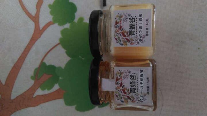 青蜂谷蜂蜜 秦岭中蜂土蜂蜜60g 深山野生天然成熟原蜜 迷你瓶装牛奶花茶伴侣 晒单图