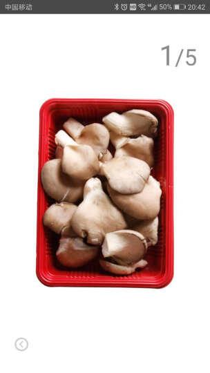 瑞鲜生 秀珍菇 蘑菇 约200g 新鲜蔬菜 晒单图