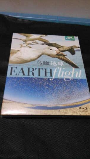 鸟瞰地球(蓝光碟 BD50 2碟) 晒单图
