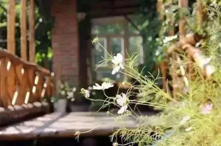 中国考古探秘纪实丛书:风雪定陵(明定陵地下玄宫洞开记)(修订版) 晒单图