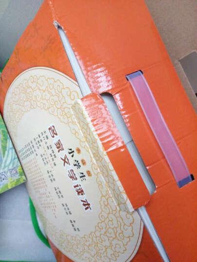 小学生名家文学读本 典藏版全套装共10册 鲁迅 老舍 朱自清 中国儿童文学作品选 晒单图
