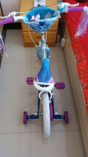 Bailey 迪士尼 儿童自行车12/14/16/18寸童车3-6岁男女孩小宝宝脚踏单车 冰雪奇缘14寸花篮升级版 晒单图