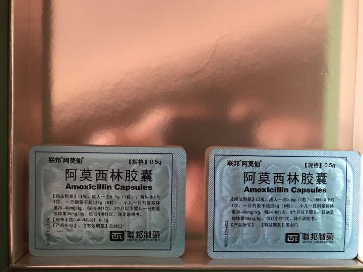 阿莫仙 阿莫西林胶囊 珠海联邦 0.5g*24S 晒单图
