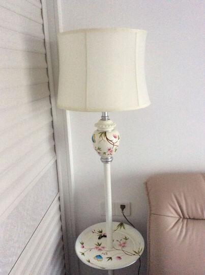 圣玛帝诺 欧式落地灯 客厅卧室书房卧室床头立式护眼盘子手绘落地式台灯 AV-1271黄色葡萄 晒单图