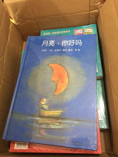 2017全球翡翠拍卖年鉴 晒单图