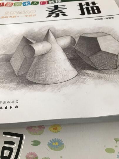 儿童美术入门教程——素描 晒单图