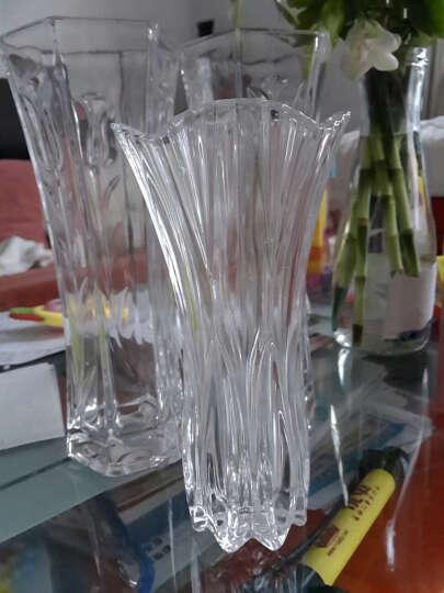 CG 家居装饰品 欧式玻璃花瓶摆件仿真花花瓶花艺 小号紫色花瓶+11支郁金香(套餐价) 晒单图