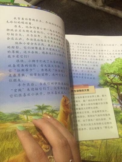 现货学而思我的第一本国学书 全套10本豆宝讲成语3-8岁儿童动画绘本亲子趣味成语绘本幼儿视频绘本 晒单图