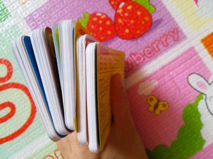 阳光宝贝手提书 全10册 亲子共读水果蔬菜认物古诗识人物交通拼音动物等0~3岁宝宝启蒙 晒单图