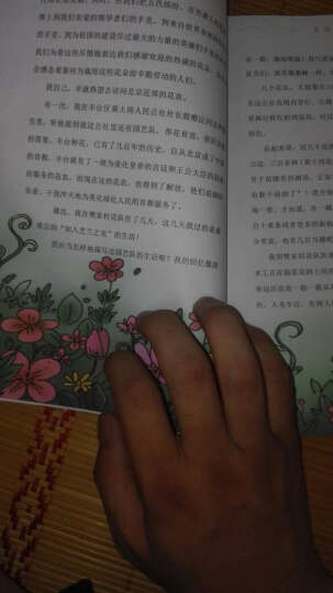 4册全彩绘本】稻草人 书儿童文学 兔子坡中英双语  小桔灯  寄小读者 冰心 晒单图
