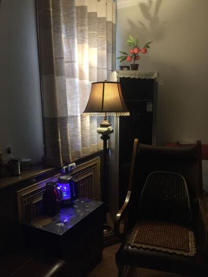圣玛帝诺 创意欧式落地灯卧室酒店大堂客厅立式狮子造型复古装饰书房落地台灯 晒单图