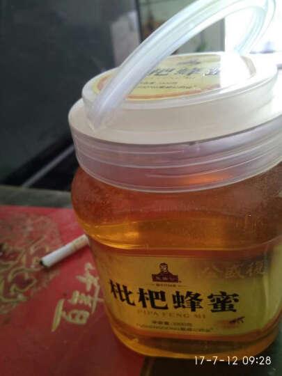 复盛公 【限时2件9折】中华蜂 野生天然蜂蜜高度成熟蜜1000克润肠润肤做面膜 土蜂蜜1000g 晒单图