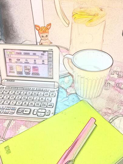 卡西欧(CASIO)E-Y300WE 电子词典 日英汉辞典  日语学习 能力考 雪瓷白 晒单图