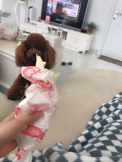 伯纳天纯Pure&Natural 宠物狗粮泰迪/贵宾成年犬狗粮 12月龄以上 1.5kg 晒单图