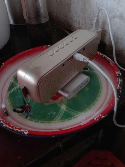 山水 SANSUI T16无线蓝牙音箱手机便携小音响收音机插卡低音炮电脑小钢炮 土豪金 晒单图