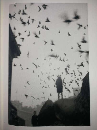 塞尔吉奥·拉莱:流浪的摄影师 晒单图