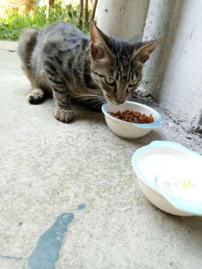 澳吉尔 猫粮 天然粮 猫食 成年猫 主粮 贵族英短暹罗加菲猫宠物猫粮 2kg 晒单图