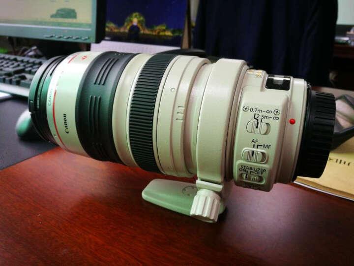 佳能(Canon)远摄长焦变焦 单反相机镜头 28-300f/3.5-5.6L IS USM镜头 晒单图