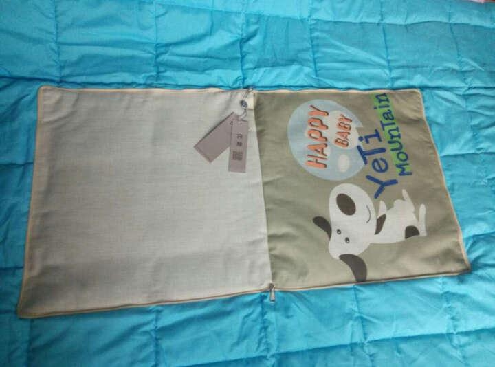 优蒙家纺 两用棉麻抱枕靠垫空调被午休卡通被子 彩条象 45cm*45cm 展开105*150cm 晒单图