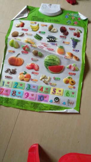 猫贝乐 有声挂图6张启蒙套装(水果、数字、人物、拼音、动物,英文) 立体识字语音启蒙早教机婴幼儿童益智 晒单图