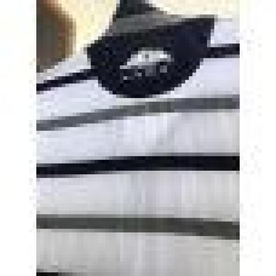 波司登男装 POLO衫男 短袖T恤2017夏装上新男士韩牌修身条纹休闲翻领 桔色 XL 晒单图