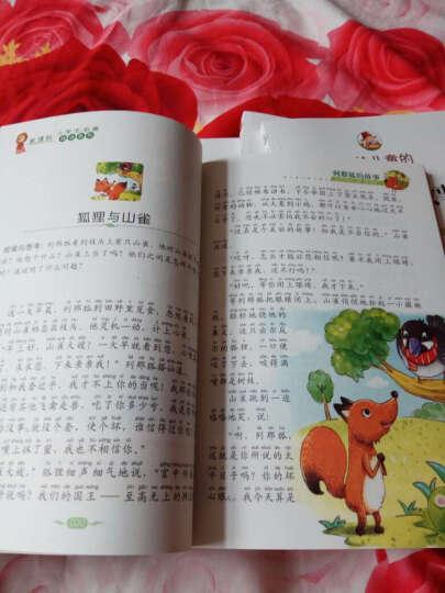 语文新课标 小学生必读丛书 无障碍阅读 彩绘注音版:列那狐的故事 晒单图
