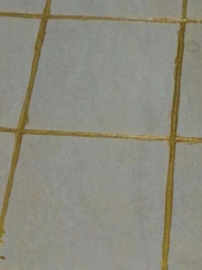 彩陶 水性环保美缝剂双组份 瓷缝剂双管瓷砖勾缝剂填缝剂陶瓷美缝胶真防水防霉卫生间墙砖地砖客厅卧室美缝 纯黄金(送液压胶枪+工具) 晒单图
