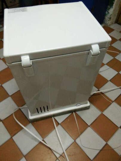 志高 CHIGO 家用 小冷柜 冰柜 小型 顶开式 冷藏冰冻 小冰箱 卧式 白色108升BD/BC-108 晒单图