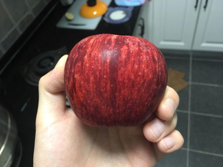 华圣 新西兰进口姬娜苹果 6个装 单果约160-180g 新鲜水果  晒单图