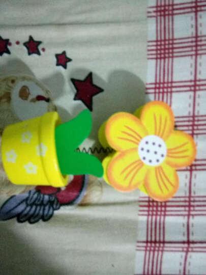 创意小花盆木质便签夹 名片夹  花朵造型装饰木制小礼品 图案混发 晒单图