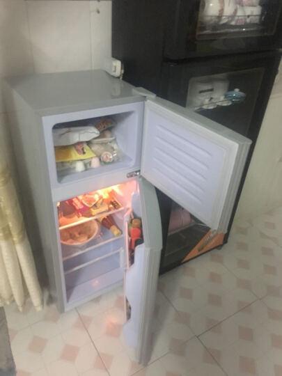 樱花(SAKURA) BCD-112 112升 双门迷你 小冰箱 家用 冷藏冷冻小型 银色 晒单图