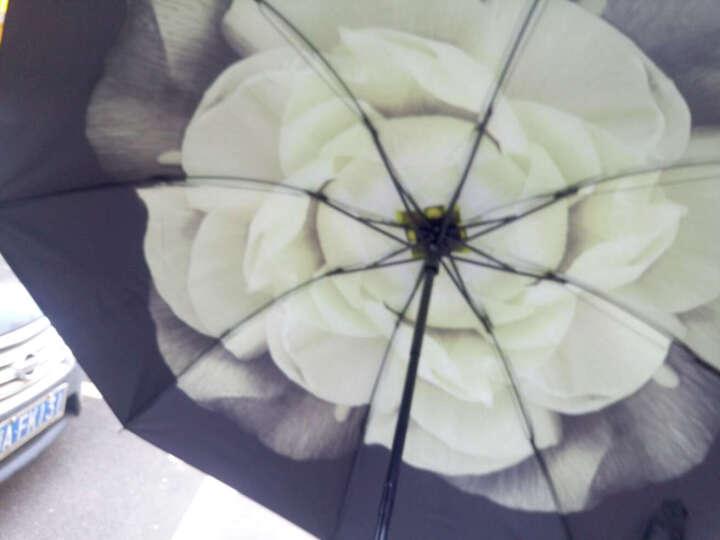 上海故事小黑伞遮阳伞女士防紫外线公主伞韩版夏季防晒黑胶太阳伞创意折叠晴雨伞 碎花圃 晒单图