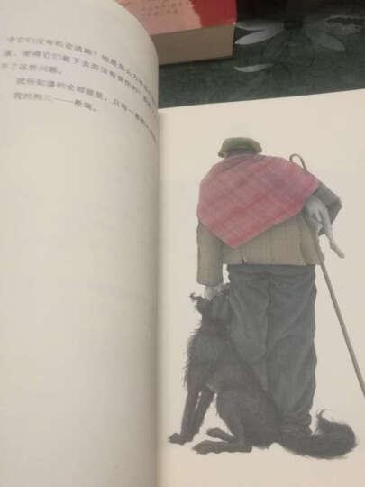 永远的珍藏:安徒生童话+格林童话+苏格兰童话(套装共3册) 晒单图