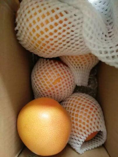 美果汇 进口红肉西柚4枚礼盒装 葡萄柚 柚子 新鲜水果 水果礼盒员工福利 晒单图
