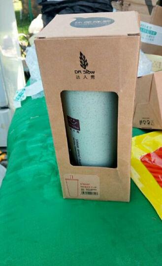 小麦秸秆双盖带吸管防漏水杯 白粉奶昔杯运动水杯 450ml 绿色 晒单图