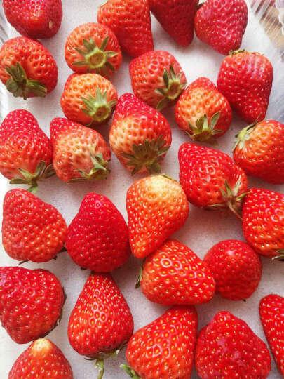 奶油草莓 3盒约2.4斤 新鲜现摘现发 顺丰空运 晒单图