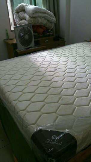 纽卡斯弹簧床垫天然乳胶席梦思床垫硬椰棕垫舒适织锦+3E椰梦维+九区弹簧 D 比利时面料+3E椰梦维+九区弹簧 1800mm*2000mm 晒单图