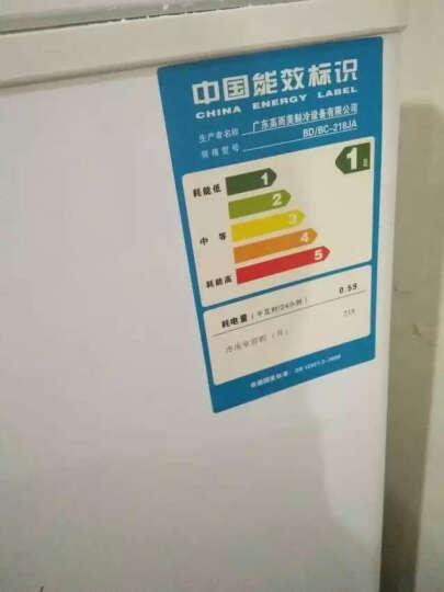 志高 CHIGO  冷藏冷冻单温冷柜家用卧式商用冰柜 冰吧 折扣特惠价 187升BD/BC-187JA 晒单图