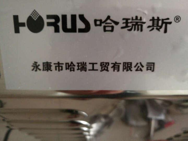 哈瑞斯(HARUISI) 粉碎机五谷杂粮磨粉机高品质商用磨粉机 五谷磨粉机 +10磨片+菜刀+磨刀石 3000w 晒单图