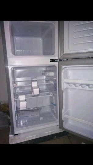 喜力(XIL)双门 迷你小冰箱 家用小型电冰箱 冷藏冷冻节能静音  BCD-58A 炫银【京东发货】 晒单图