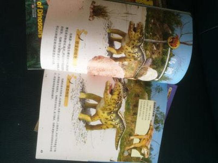 带拼音的图画书恐龙书籍恐龙星球侏罗纪6册恐龙百科全书少儿百科全书绘本动漫小学生科普百科课外书籍必读 晒单图