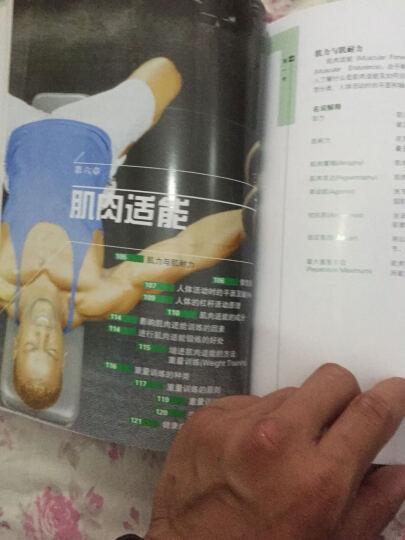 包邮 体适能基础理论 体育考试 健身教练书 体育运动 体适能书 书籍 晒单图