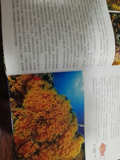 中国国家地理美丽的地球系列·水下天堂:全球最美的潜水胜地 晒单图