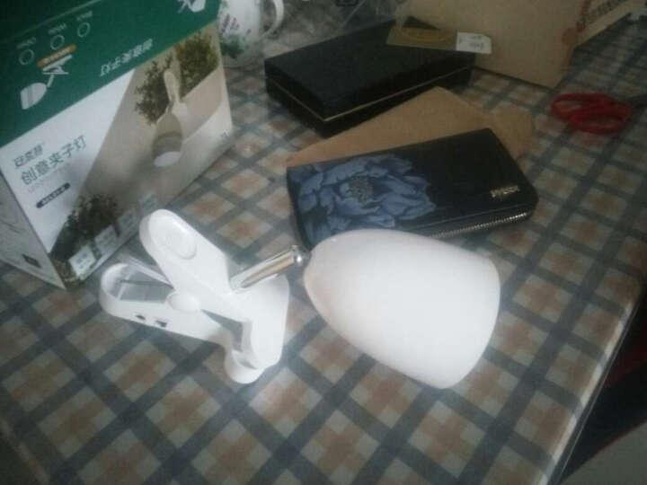 出口日本 安奈特led夹子台灯 护眼灯学生学习阅读看书宿舍寝室可夹式卧室床头插电夹灯 白杯型+电源适配器+USB线 晒单图