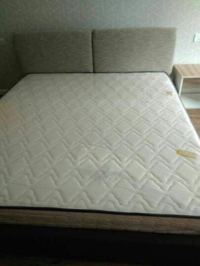 瑶海(YAHA)软硬两用乳胶席梦思床垫双人1.8米1.5m椰棕弹簧床垫单人床垫可订制 (经济款)邦尼尔弹簧+华兹记忆棉+3E椰梦维+羊绒 1800*2000 晒单图
